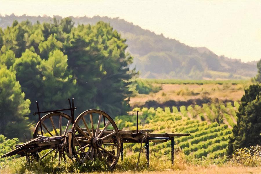 vineyard in France by Elly Schuurman
