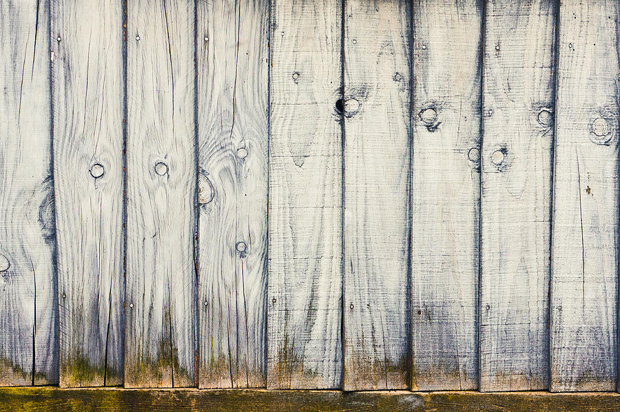 Fence Panels Photograph