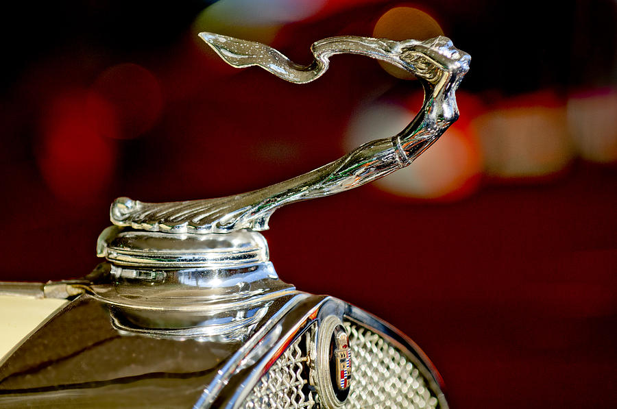 1931 Cadillac 355 A Roadster Photograph - 1931 Cadillac 355 A Roadster Hood Ornament by Jill Reger