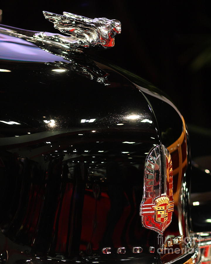1941 Cadillac Series 62 Convertible Coupe . Hood Ornament And Badge Photograph