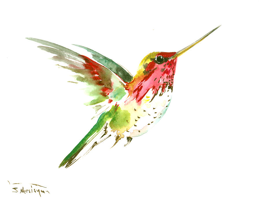 Flying Hummingbird Painting By Suren Nersisyan