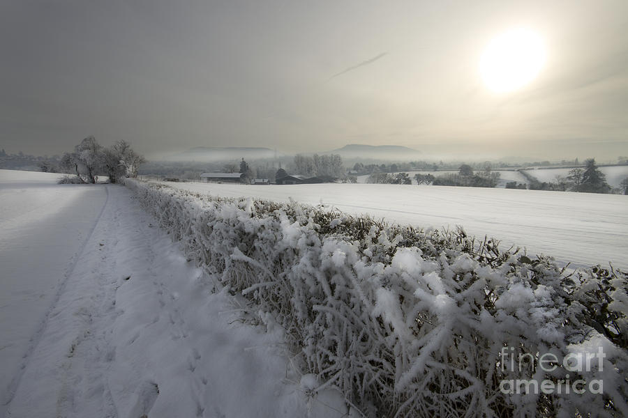 Frozen Britain Photograph