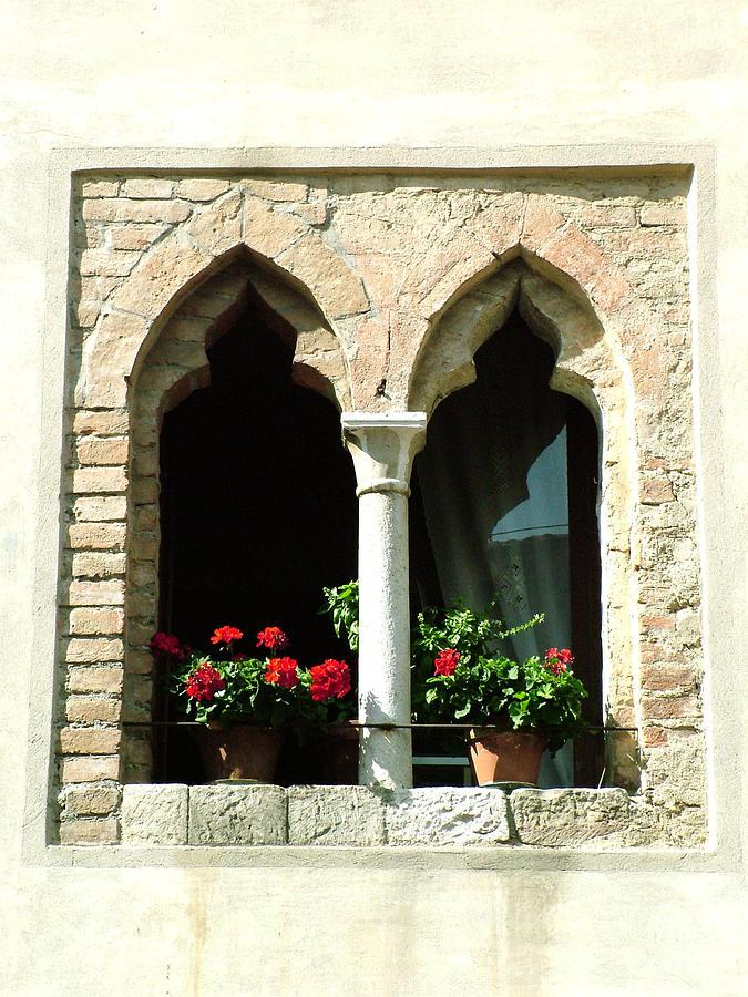 2 Geraniums In Ornate Window Photograph