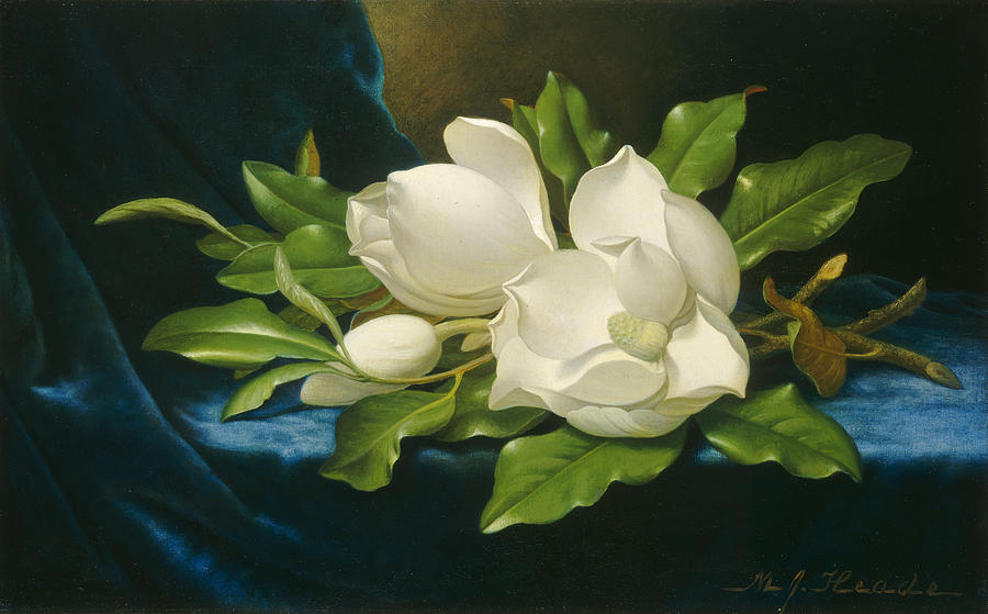 Giant Magnolias On A Blue Velvet Cloth Painting