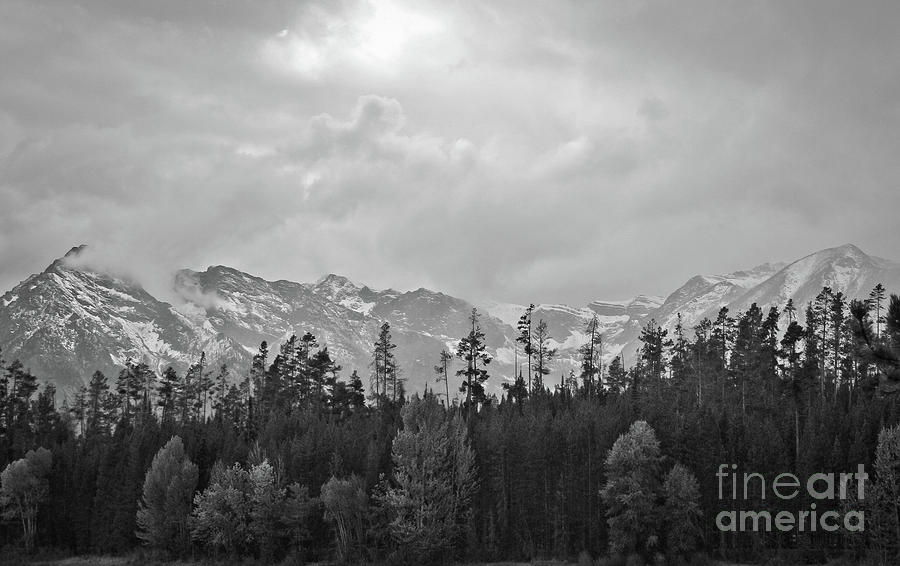 Grand Photograph - Grand Tetons by Brent Parks