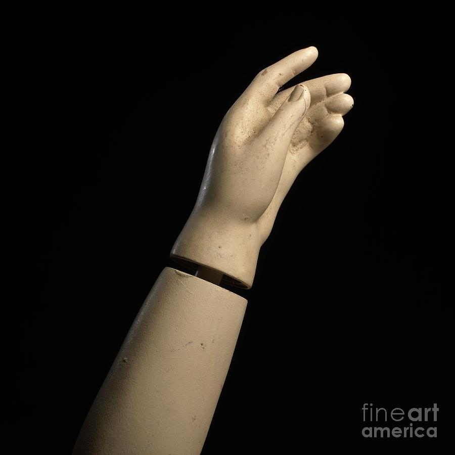 Anatomy Photograph - Hand Of Dummy by Bernard Jaubert