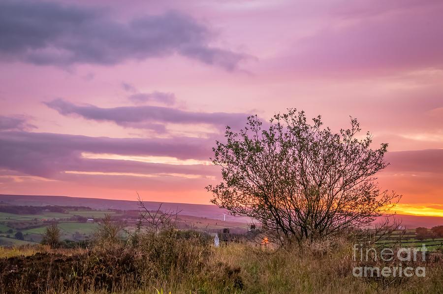 Harden Moor Photograph