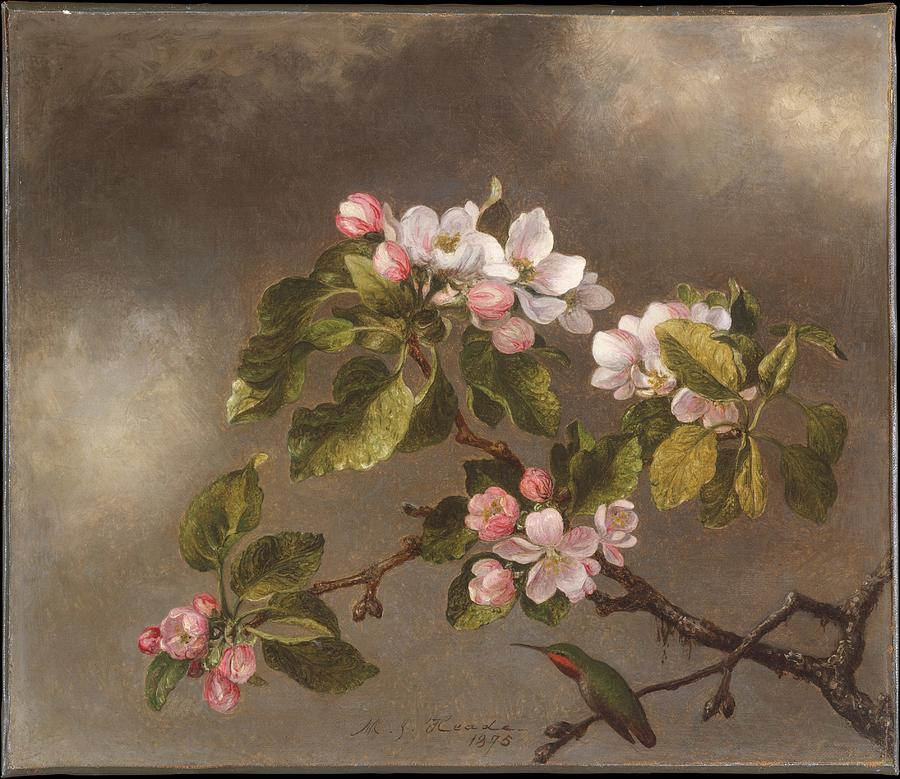Hummingbird And Apple Blossoms Painting