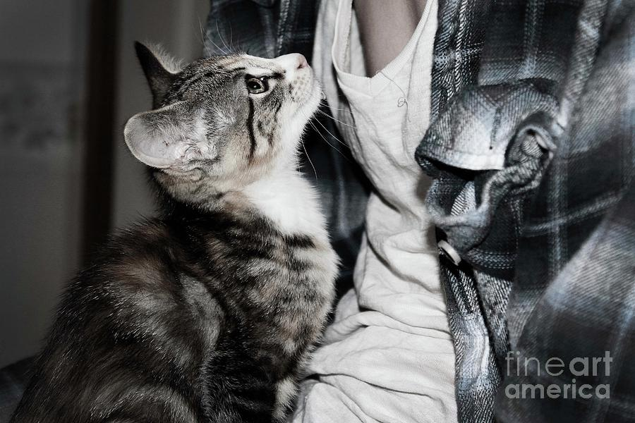 Kitten And Owner Photograph - Photography by Jayde Rowley