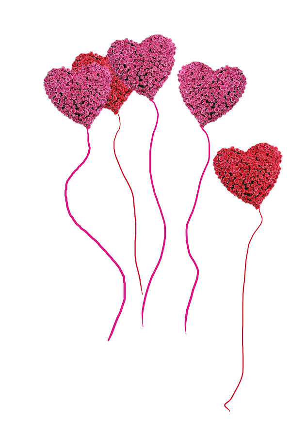 Pink Roses In Heart Shape Balloons Photograph