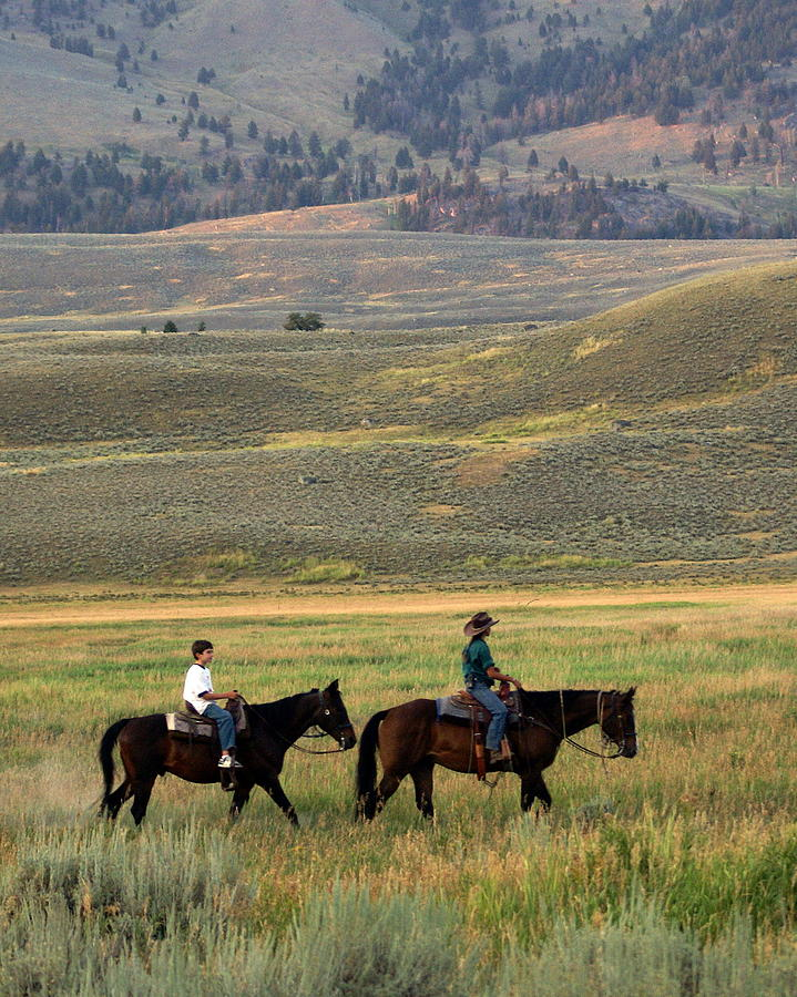 Horse Photograph - Trail Ride by Marty Koch