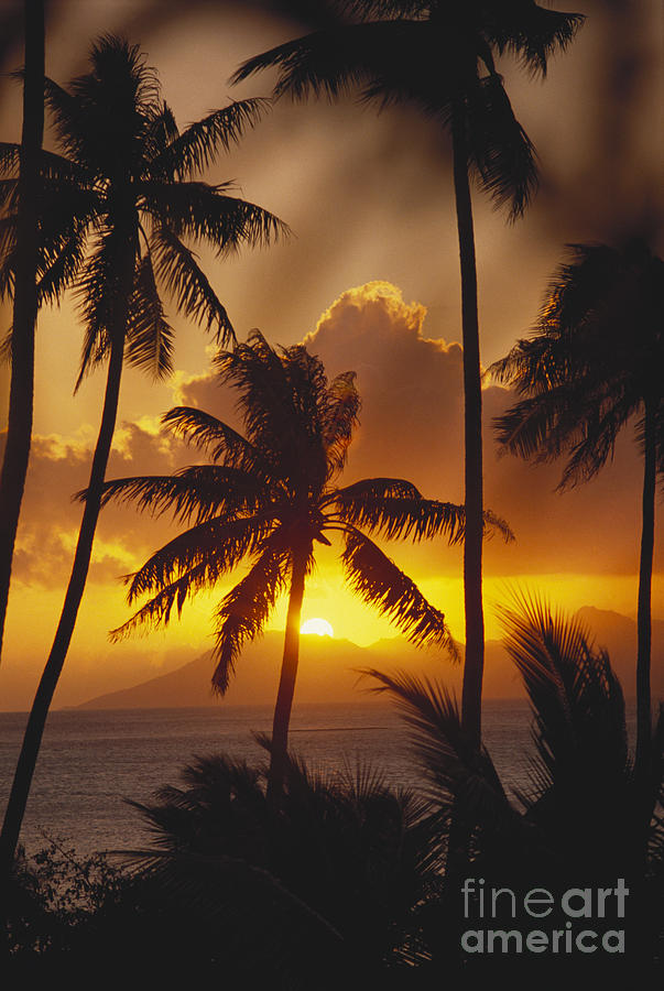 Beautiful Photograph - View Of Tahiti by Joe Carini - Printscapes