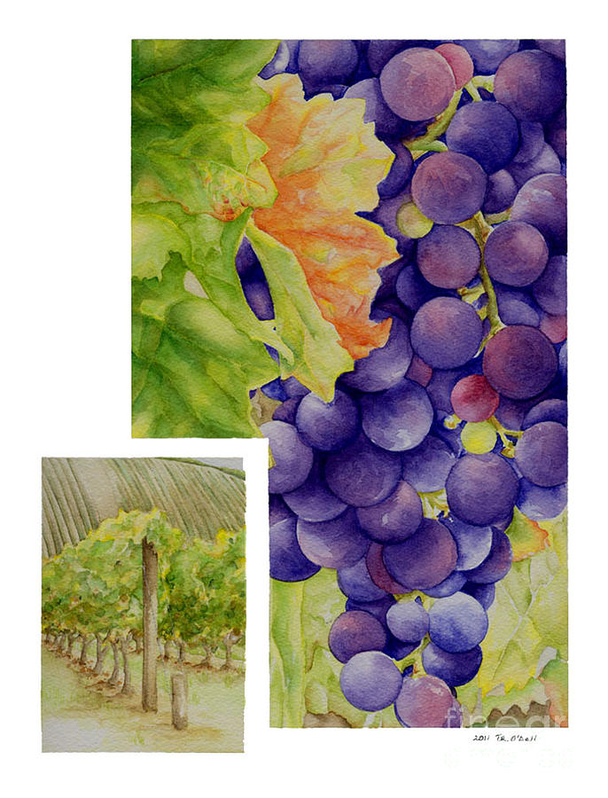 Riesling Painting - Vineyard4 by TR ODell