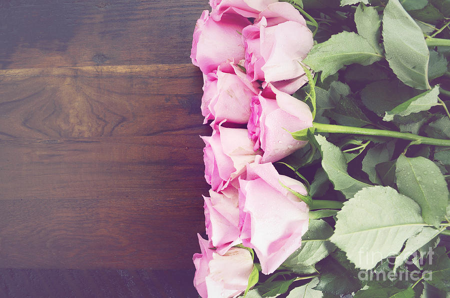 Background Photograph - Vintage Pink Roses On Dark Wood Background. by ...