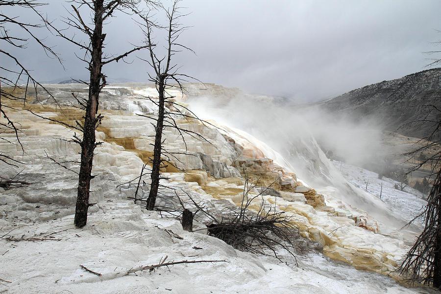Yellowstone Mammoth Hot Springs Photograph