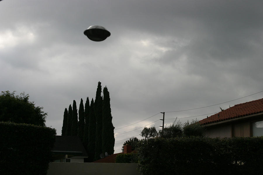 Alien Photograph - 2004 Real Ufo Evidence by Michael Ledray