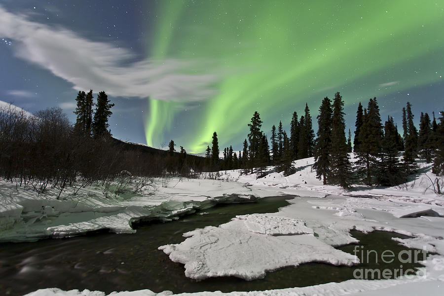 Horizontal Photograph - Aurora Borealis Over Creek, Yukon by Jonathan Tucker