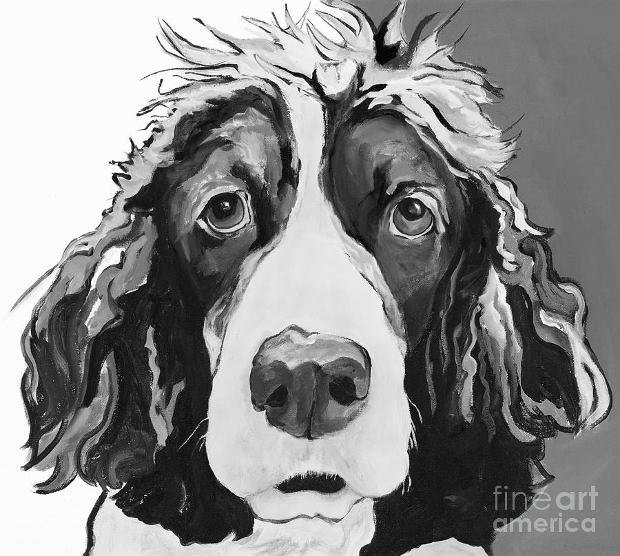 Black And White Springer Spanial Painting - Sadie by Pat Saunders-White