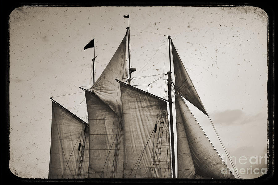 Schooner Pride Photograph - Schooner Pride Tall Ship Charleston Sc by Dustin K Ryan