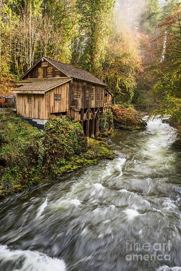 The Cedar Creek Grist Mill In Washington State Photograph