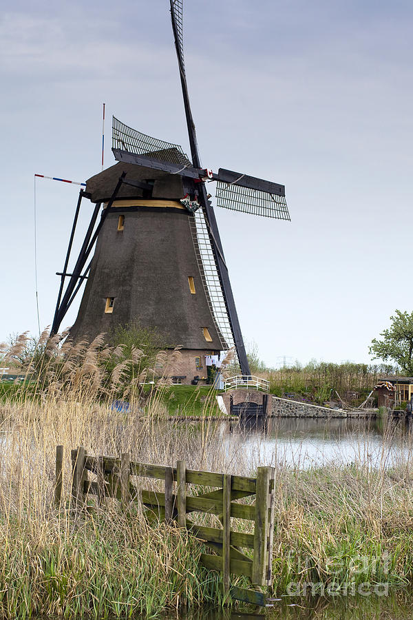 Agriculture Photograph - Mills In Netherlands by Andre Goncalves