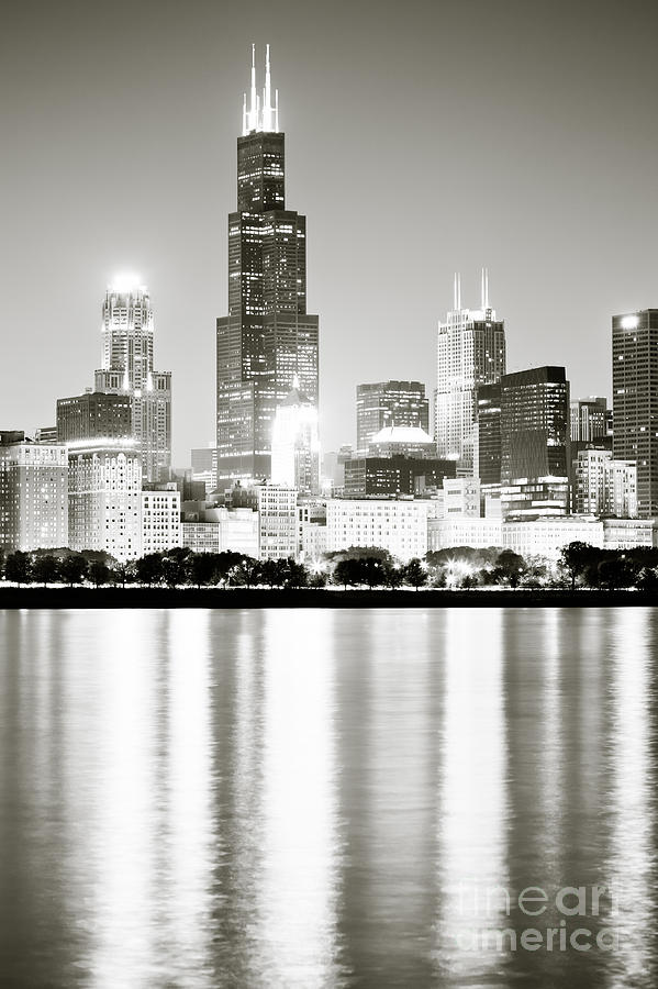 America Photograph - Chicago Skyline At Night by Paul Velgos