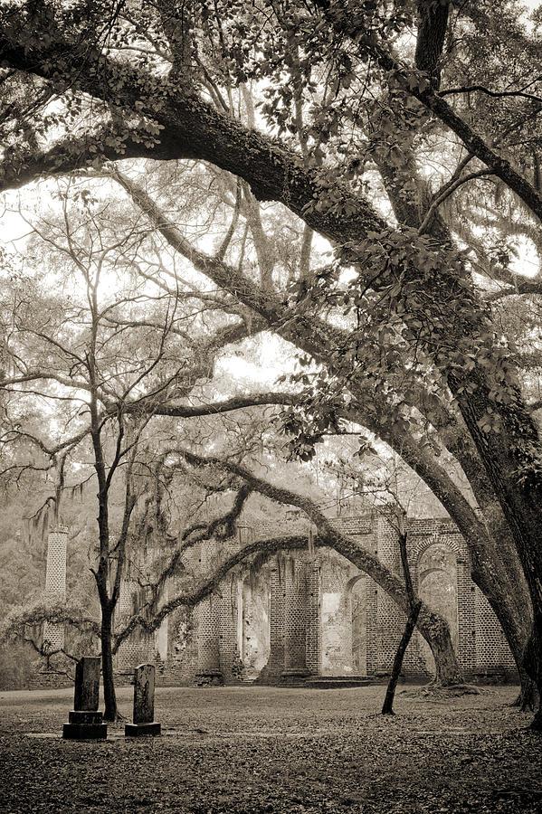 Old Sheldon Church Photograph - Old Sheldon Church Ruins by Dustin K Ryan