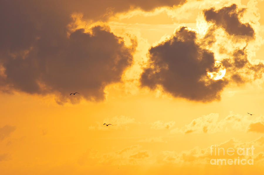 Sky Photograph - Sunset by Angela Doelling AD DESIGN Photo and PhotoArt