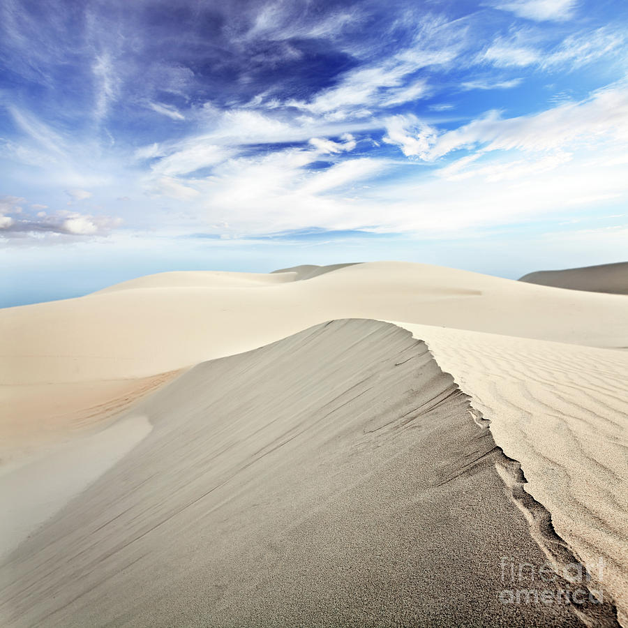 Desert Photograph - Desert by MotHaiBaPhoto Prints