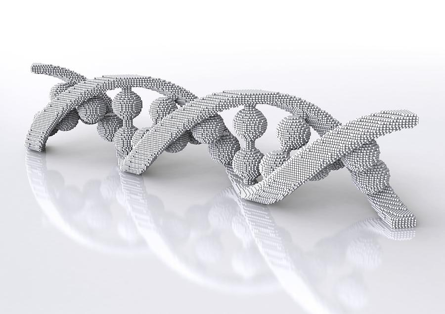 Dna Molecule, Artwork Photograph