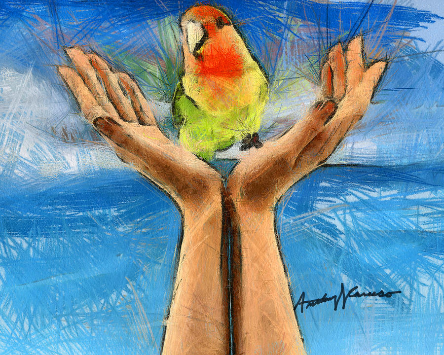 Bird Drawing - A Bird In Two Hands by Anthony Caruso