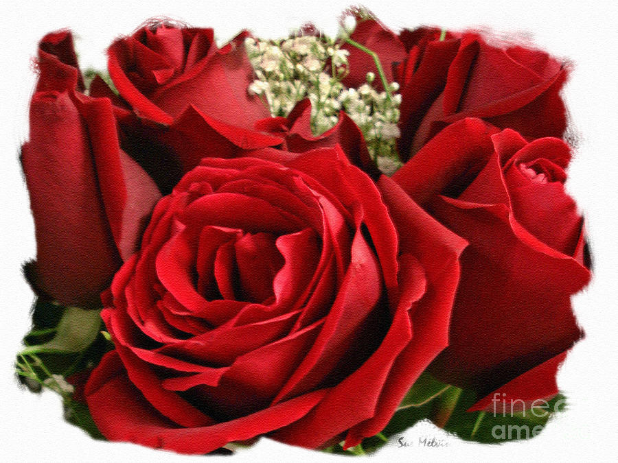 Rose Photograph - A Bouquet Of Red Roses by Sue Melvin