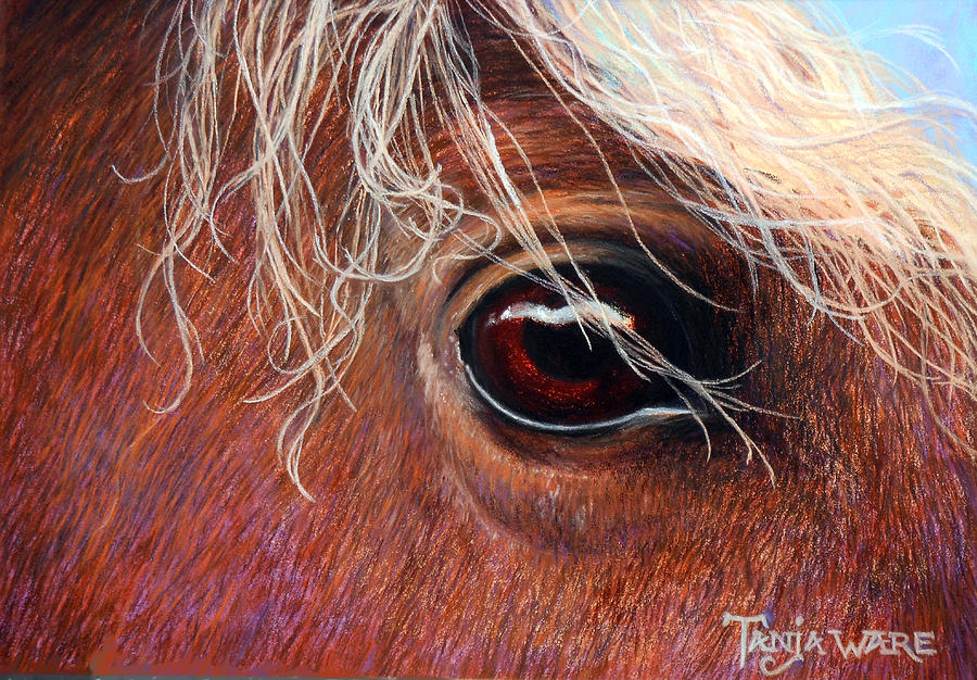 Horse Painting - A Closer Look by Tanja Ware