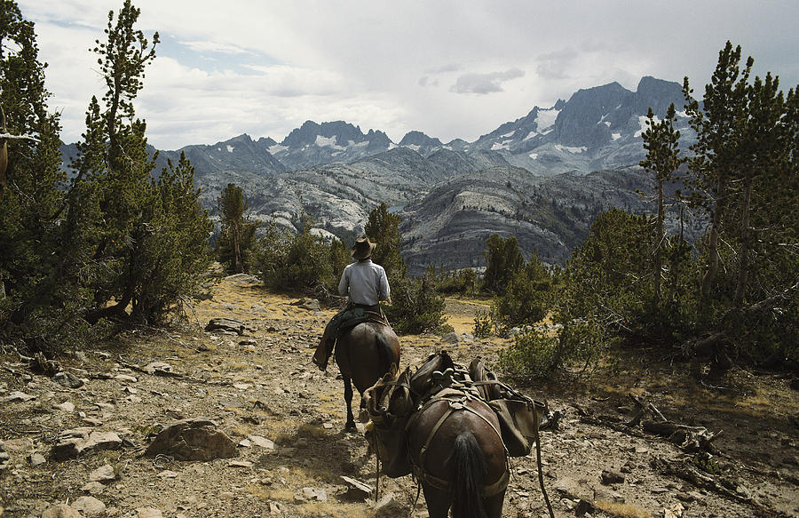 North America Photograph - A Horse Packer In A High Mountain by Gordon Wiltsie