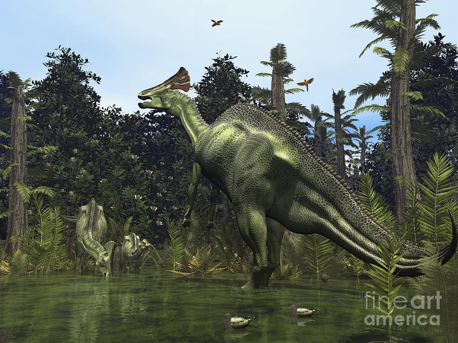 Earth Digital Art - A Lambeosaurus Rears Onto Its Hind Legs by Walter Myers