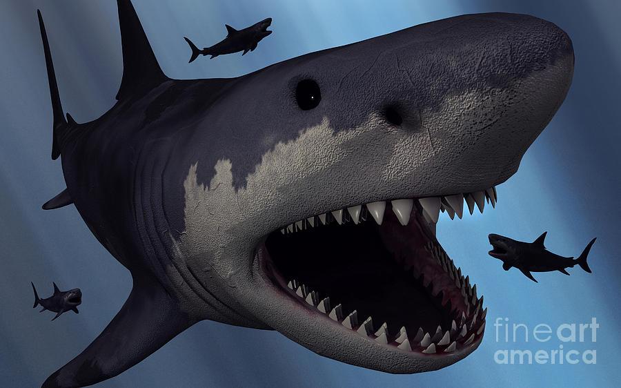Carcharodon Digital Art - A Megalodon Shark From The Cenozoic Era by Mark Stevenson