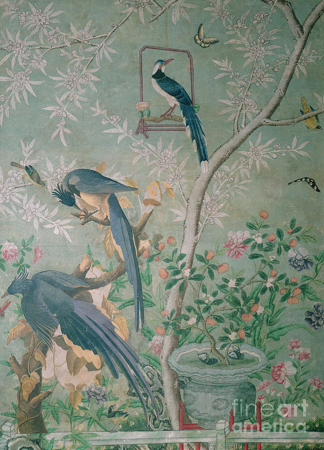 A Pair Of Magpie Jays Vintage Wallpaper Painting By John