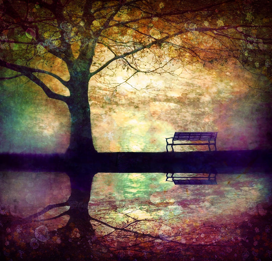 Bench Photograph - A Place To Rest In The Dark by Tara Turner