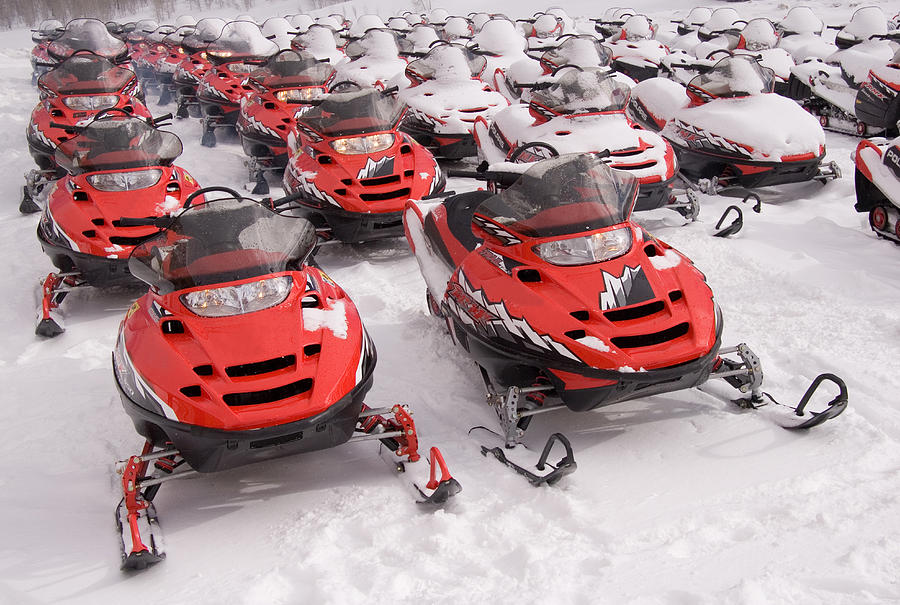 A Row Of Snowmobiles Sit Waiting Photograph