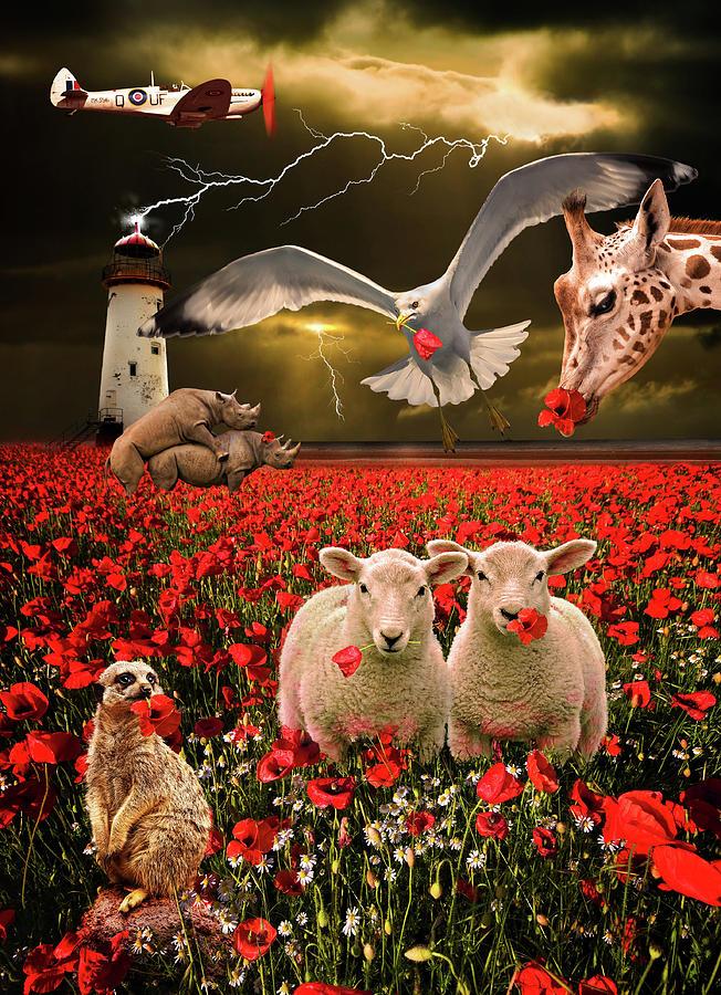 Sheep Photograph - A Very Strange Dream by Meirion Matthias