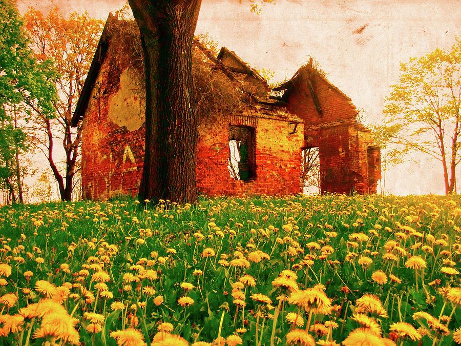 Krakow Photograph - Abandoned Beauty by Emily Allred