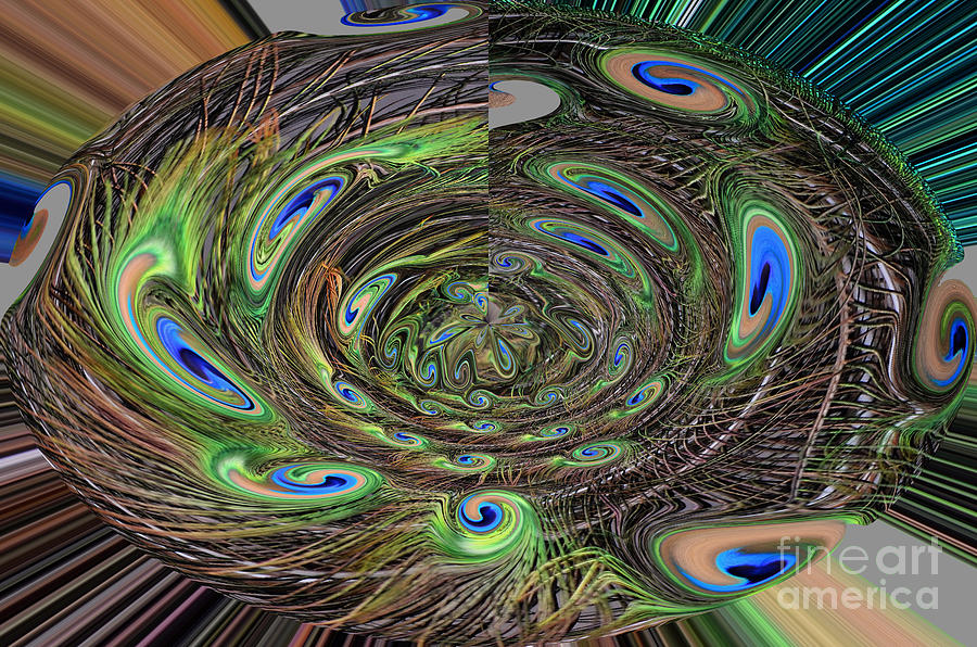 Abstract Of Peacock Feathers IIi Drawing