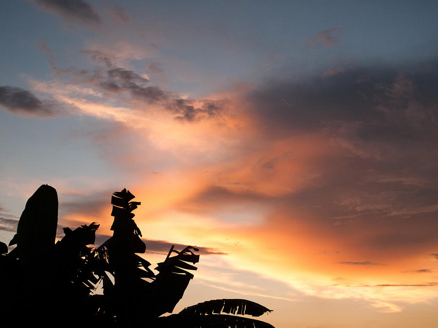 Abuja Photograph - Abuja Sunset by Hakon Soreide