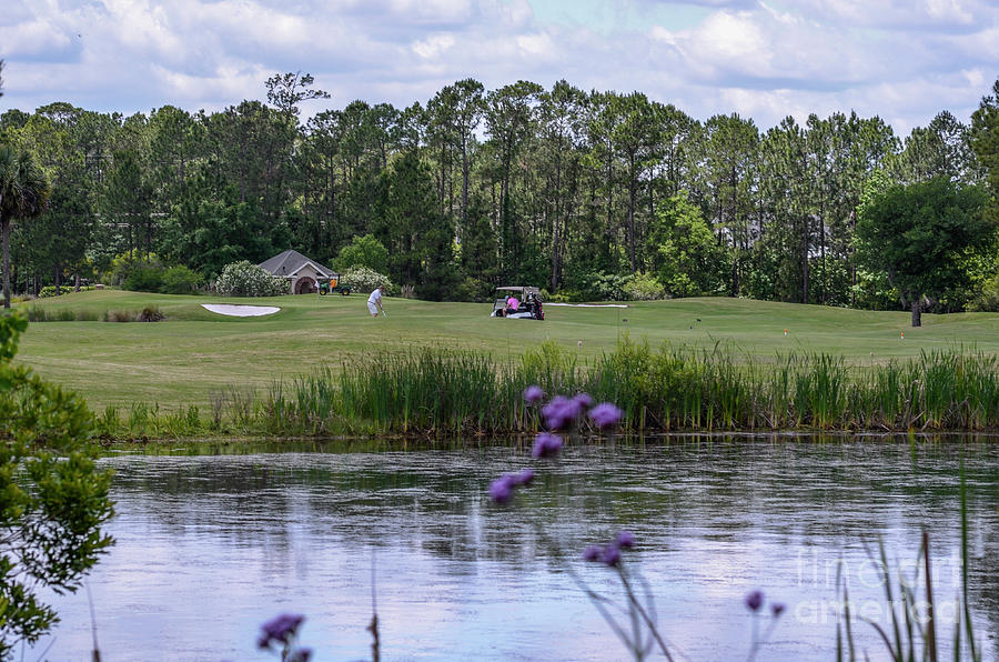 Across The Pond Photograph