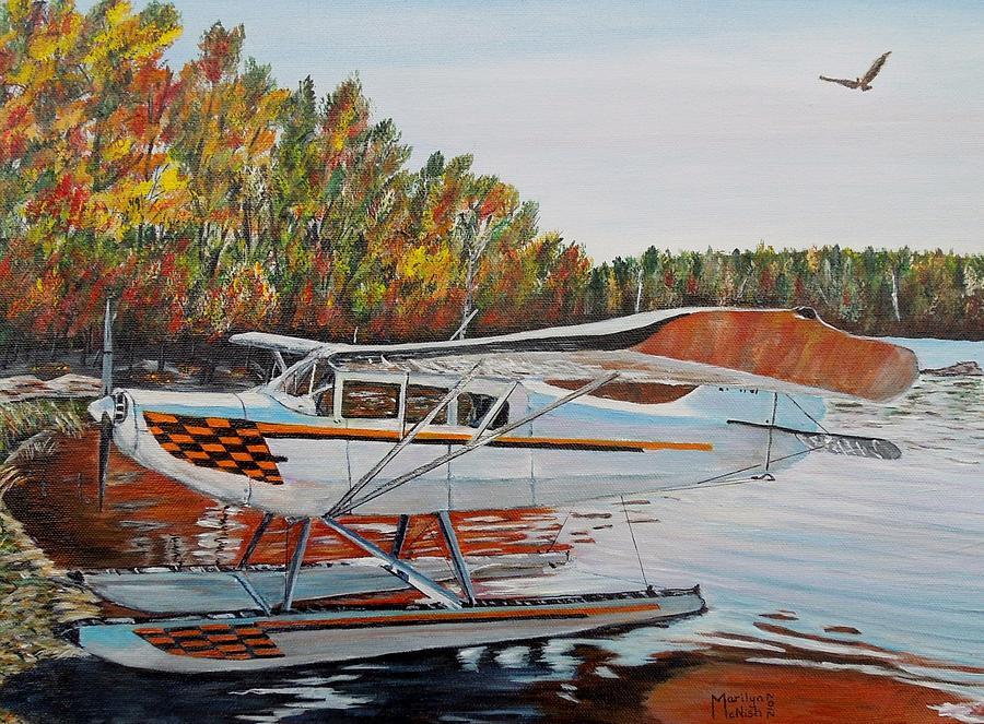 Aeronca Super Chief 0290 Painting