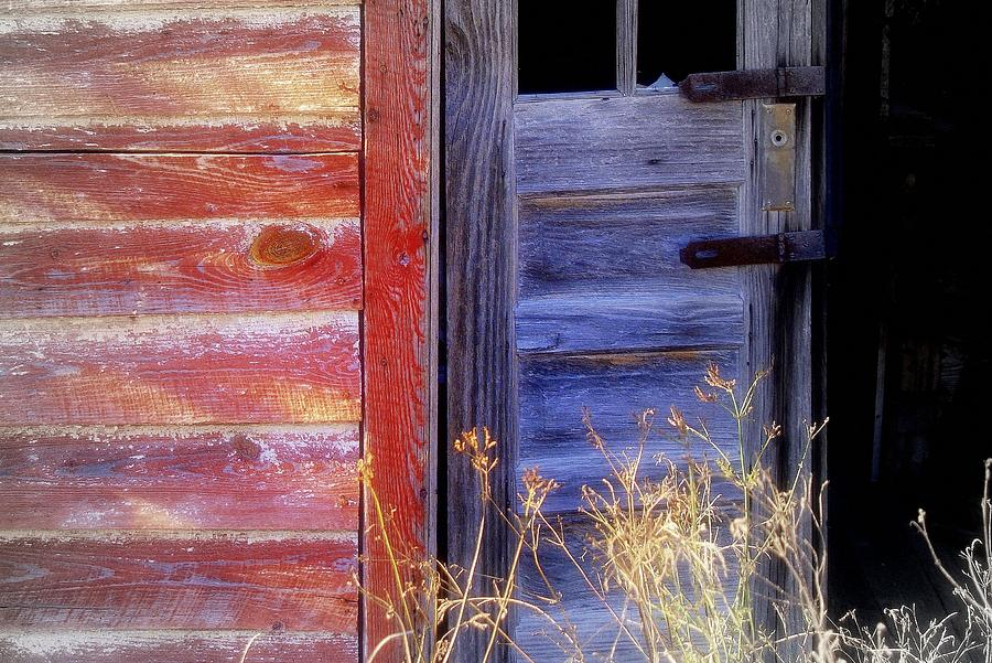 Wood Photograph - Aging Beauty.. by Al  Swasey