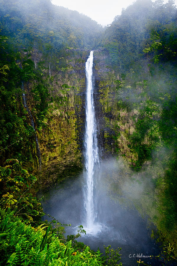 Akaka Falls Photograph