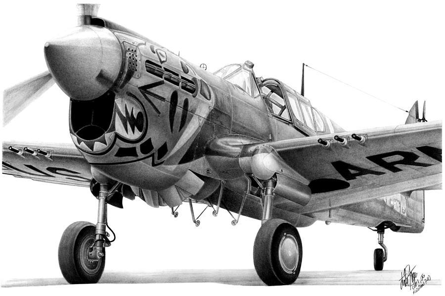 P-40 Drawing - Aleutian Tiger by Lyle Brown