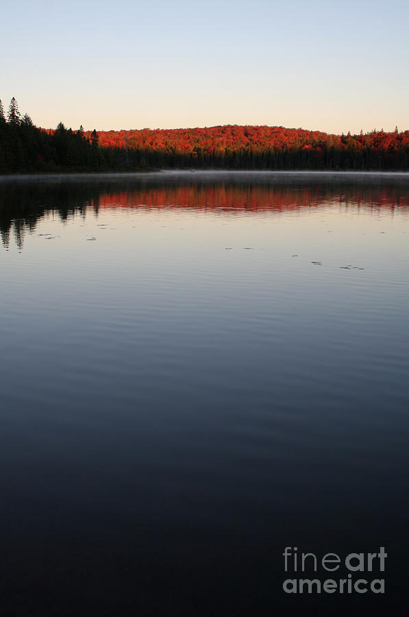 Dawn Photograph - Algonquin First Light by Chris Hill