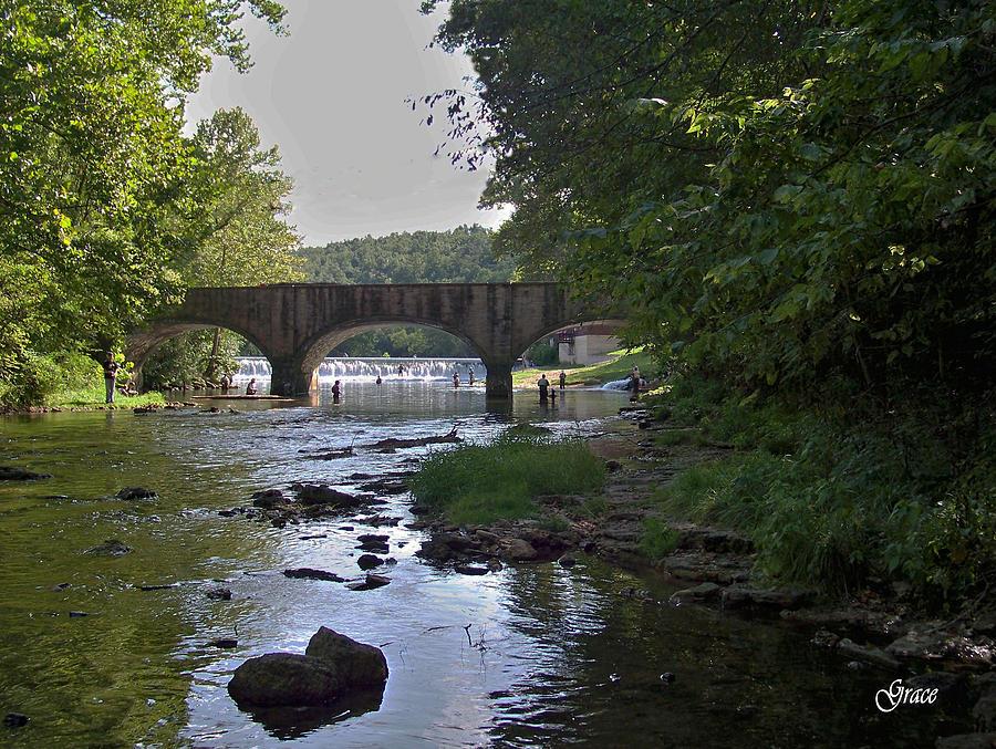 Creek Photograph - Along The Creek by Julie Grace